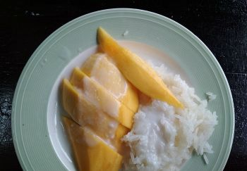 mangoStickyRice2